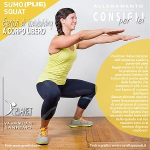 esercizi bodybuilding sumo plie squat